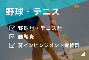 野球・テニス